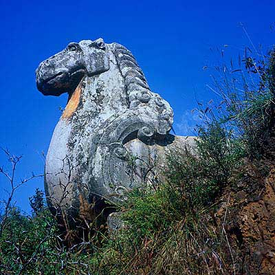 唐陵石雕马